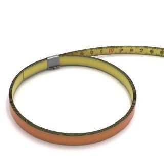 Richter Skalenbandmaß ''Duplexteilung'' - 0,3m - 13mm - rl - gelb